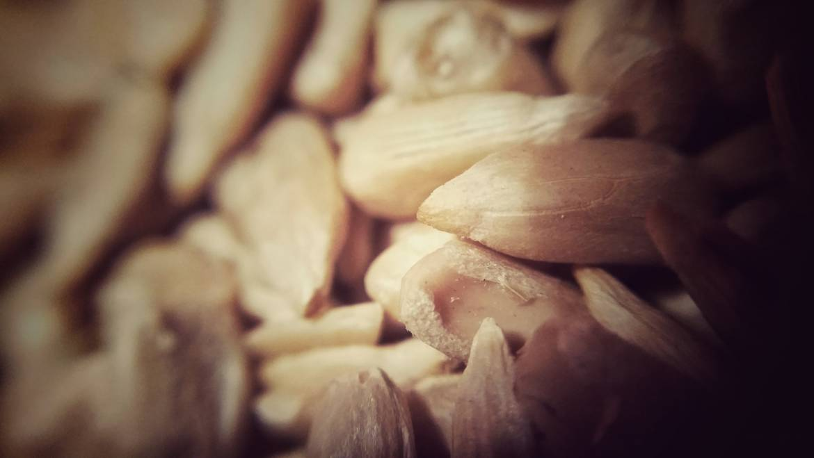 Ideas for Staying Healthy – Top 10 Seeds and Nuts for a Healthy Diet